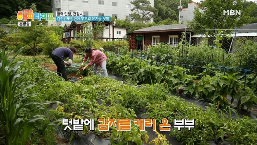 김진만♥전현아 부부의 유기농 텃밭! 텃밭에서 길들이는 철없는 남편!
